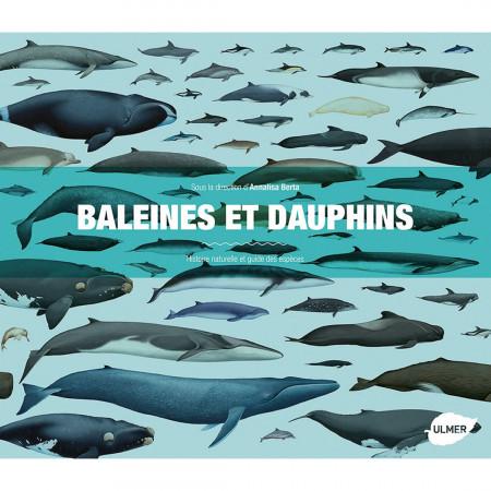 baleines-et-dauphins-editions-ulmer-livre-enfant