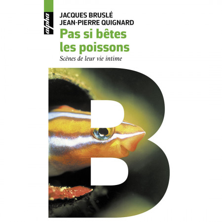 pas-si-bete-les-poissons-scènes-de-leur-vie-intime-editions-belin-livre-biologie