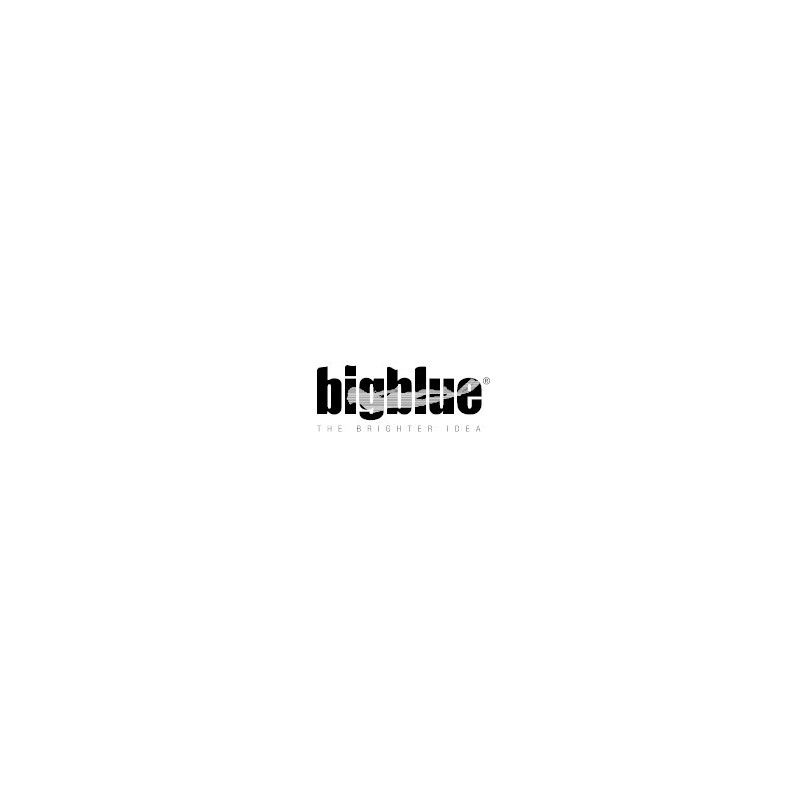 BigBlue Dive Lights